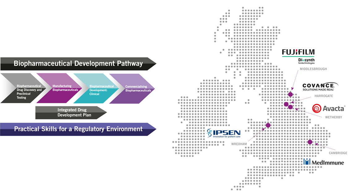 This infographic shows the various locations of our placement opportunities.