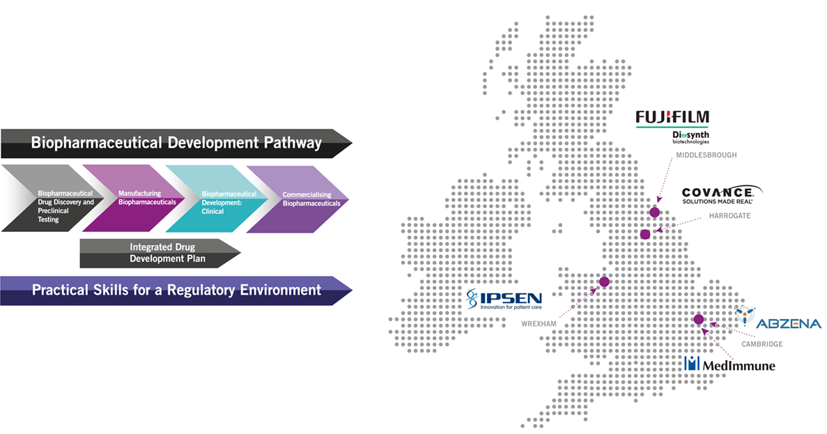This infographic shows the various locations of our placement opportunities