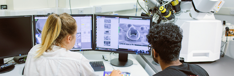 A man and a woman examine electron microscope images on a computer